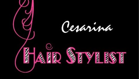 Girly Pink Zebra Hair Stylist Appointment Reminder Business Cards