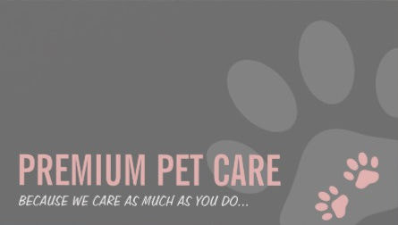 Girly pet sitting and pet care business cards girly business cards premium pet card stylish pink and gray paw prints business cards colourmoves